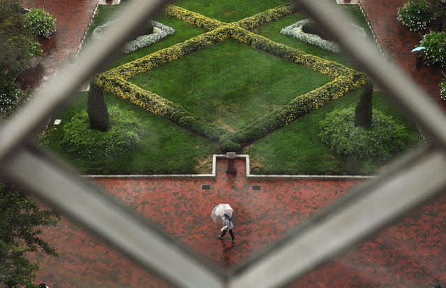 Viewed from a window of the Smithsonian Institution Building or the Smithsonian Castle an umbrella clad pedestrian makes their way by the Enid A. Haupt Garden on Wednesday September 28, 2016 in Washington, DC. (Photo by Matt McClain/The Washington Post)