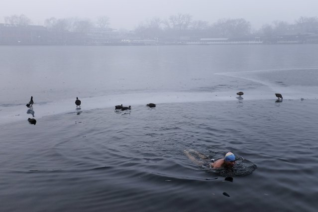 A man swims in the half-frozen Shichahai Lake on a hazy day in Beijing, China, December 25, 2015. (Photo by Reuters/Stringer)