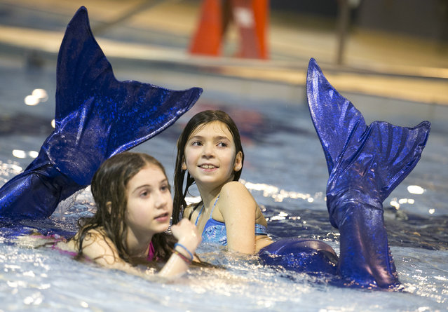 Rosalie Sabourin (R) and Ellie Champagne-Lorrain, both 11 years old, participate in their first AquaMermaid class in Montreal, February 18, 2015. (Photo by Christinne Muschi/Reuters)