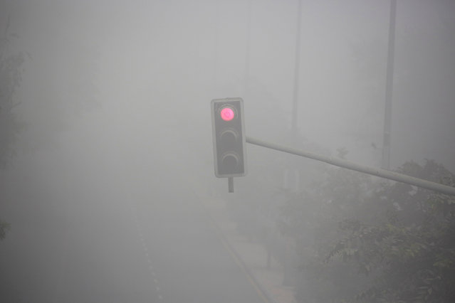 A traffic signal displays a red light during heavy fog in Delhi, India December 1, 2016. (Photo by Cathal McNaughton/Reuters)