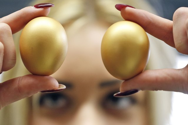 A worker checks the quality of  golden colored  eggs at the Baumeister Frischei (fresh egg) company  in Breckerfeld, Germany, Tuesday, March 17, 2015. 100,000 colored boiled eggs leave  the  egg paint factory every day. Baumeister eggs are well known for their different and difficult paintings. Painted eggs are common in Christian traditions  during Easter. (Photo by Frank Augstein/AP Photo)
