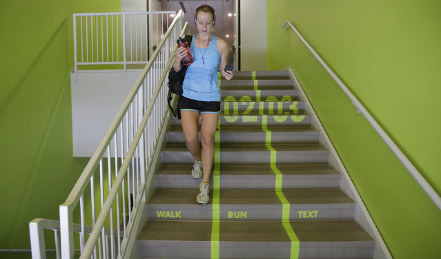 Utah Valley University student Jody Nelson walks down the bright green lanes painted on the stairs from the gym Thursday, June 18, 2015, at Utah Valley University, in Orem, Utah. Utah Valley University spokeswoman Melinda Colton said  the green lanes were intended as a lighthearted way to brighten up the space and get students attention. (AP Photo/Rick Bowmer)