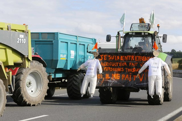 "French livestock farmers block trucks that transport food goods coming from foreign countries on the road leading to Saint Lo and will escort them to the Prefecture in Saint Lo, France, July 22, 2015. Message reads: ""I am a businessman and a farmer"". (Photo by Jacky Naegelen/Reuters)"