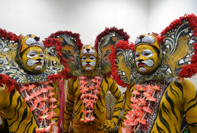 "Indian tribal dancers dressed in costume pose as they prepare to perform a traditional ""tiger dance"" on the occasion of International Tiger Day in Kolkata on July 29, 2015. International Tiger Day which came into being at the Saint Petersburg Tiger Summit in 2010, is held annualy on July 29, to give worldwide attention to the reservation of tigers and it is both an awareness day as a celebration. (Photo by Dibyangshu Sarkar/AFP Photo)"