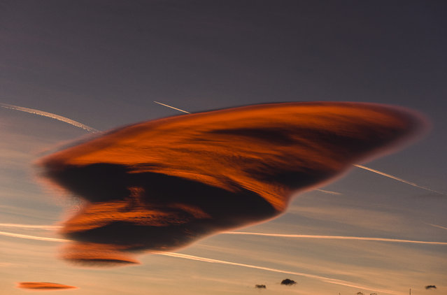 This photo taken on December 2, 2015 shows a lenticular cloud forming as white streaks from airplanes mark the blue sky, in a rare atmospheric phenomena above the town of Gevgelija on December 2, 2015. Lenticular clouds have been regularly confused for UFOs throughout history due to the their smooth, round or oval lens-shaped structure. (Photo by Armend Nimani/AFP Photo)