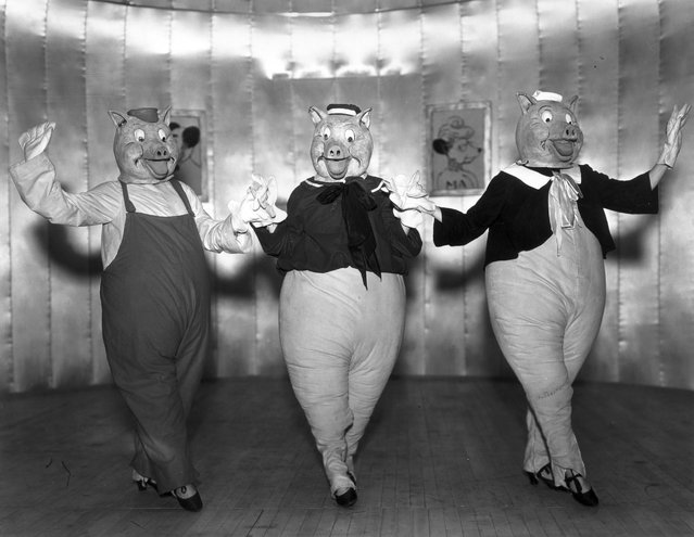 """Actresses Rosalie Franson, Estelle Essex and Annabelle Lancaster as the Three Little Pigs in a production of """"Monte Carlo Follies"""" at the Grosvenor House Hotel, London, 1934. (Photo by Sasha)"""
