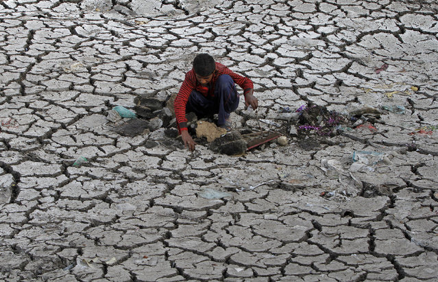 A boy searches for recyclable material from the cracked earth of dried-up portion of the Sabarmati river in the western Indian city of Ahmedabad May 23, 2012. (Photo by Amit Dave/Reuters)