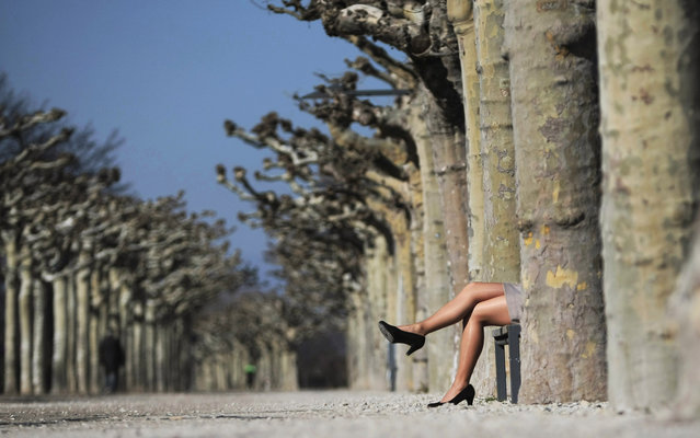 A woman wearing high heels, nylon stockings and a skirt sits on a park bench and enjoys the sunny spring day in Mainz, western Germany on March 5, 2013. (Photo by Fredrik Von Erichsen/AFP Photo)