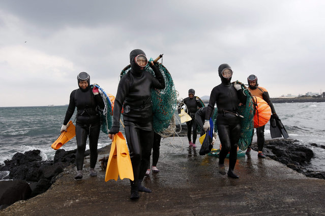 "South Korean female free divers carry equipment after diving at Pyeongdae-ri, Jeju island, South Korea, 06 December 2015. Female free divers, or ""haenyeo"" in Korean, hunt for shell fish, abalones, sea urchins, squid, octopus, small snails and seaweed without using any underwater diving equipment. While underwater, haenyeo take with them only goggles, a ball-like tube for keeping balance and a basket to put their catch in. (Photo by Jeon Heon-Kyun/EPA)"