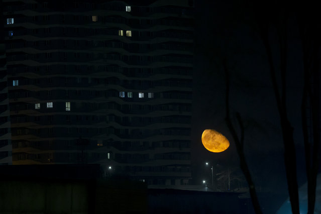 The moon is pictured near a house in Chisinau, Moldova, 03 March 2021. (Photo by Dumitru Doru/EPA/EFE)