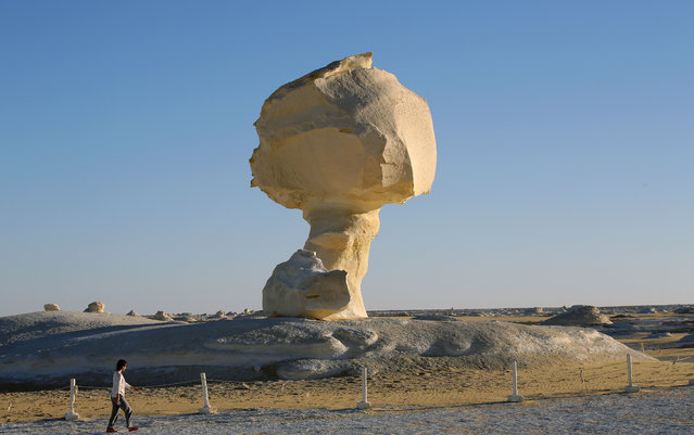 Tourists visit the mushroom, a massive white inselberg that are characteristic of Egypt's White Desert which is located 500 km southwest of Cairo, Egypt, 07 February 2021. (Photo by Khaled Elfiqi/EPA/EFE)