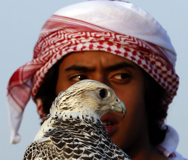 A young Emirati boy holds his falcon at the Liwa desert, 220 kms west of Abu Dhabi, on the sidelines of the Mazayin Dhafra Camel Festival on December 21, 2013. (Photo by Karim Sahib/AFP Photo)