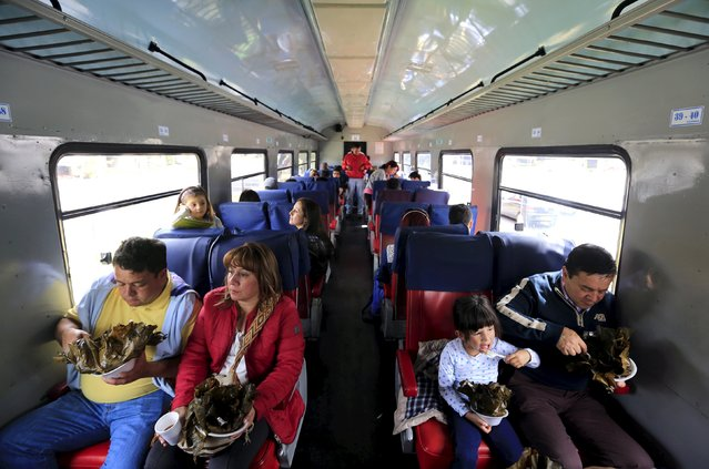 "A Colombian family eats tamale (a traditional Mesoamerican dish made of masa, which is steamed or boiled in a leaf wrapper; tamales can be filled with meats, cheeses, fruits, vegetables, chilies or any preparation according to taste) as they ride a ""La Sabana"" tourist train in Bogota March 1, 2015. (Photo by Jose Miguel Gomez/Reuters)"