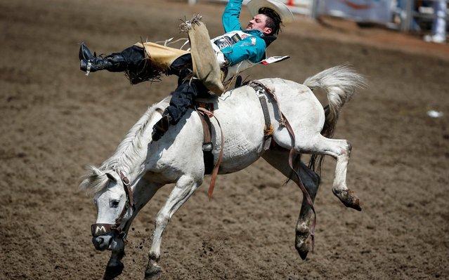 Ty Taypotat, of Regina, Saskatchewan, rides AKA during bareback rodeo action at the Calgary Stampede in Calgary, Sunday, July 7, 2019. (Photo by Jeff McIntosh/The Canadian Press via AP Photo)