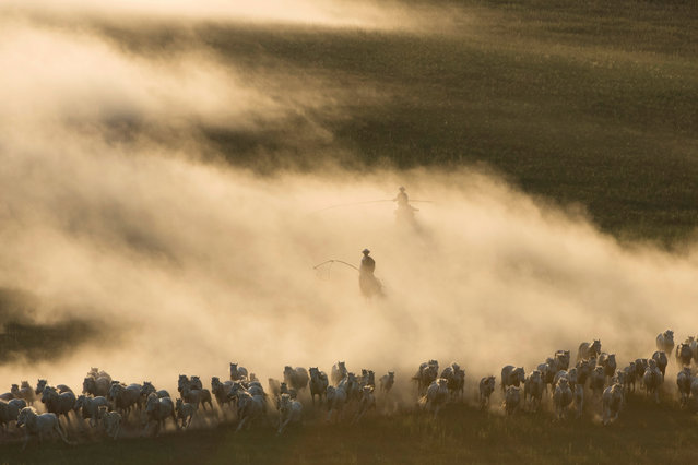 Horses run on the grassland of Ujimqin in Inner Mongolia Autonomous Region, China on July 21, 2019. (Photo by Reuters/China Stringer Network)