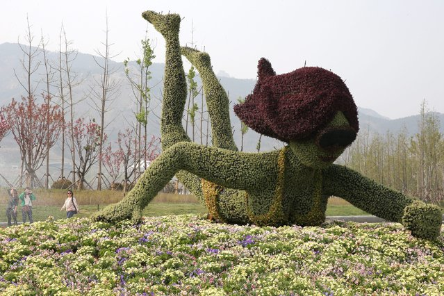 "Visitors walk by a gardening sculpture during an opening test run at the 2014 International Horticultural Expo at Baiguo Mountain Forest Park in Qingdao city, Shandong province, China, 13 April 2014. The garden expo will open to the public from 25 April to 25 October with the theme of ""From the Earth, for the Earth"". (Photo by Wu Hong/EPA)"