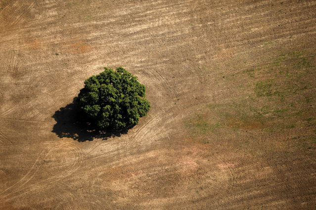 An aerial view shows a deforested plot of the Amazon near Porto Velho, Rondonia State, Brazil, September 10, 2019. (Photo by Bruno Kelly/Reuters)