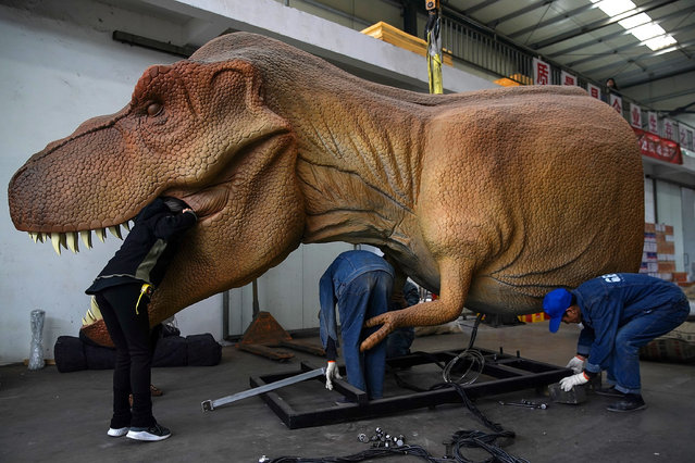 Chinese workers maintain an Animatronic Dinosaurs at Gengu Dinosaurs Science and Technology company on November 13, 2019 in Zigong, Sichuan Province, China. There are hundreds of simulated dinosaur manufacturers in Zigong City. It is the largest simulated dinosaur manufacturing in China. It accounts for 95% of mainland China's production and 85% of the world's total. Its products are exported to more than 100 countries. (Photo by Lintao Zhang/Getty Images)