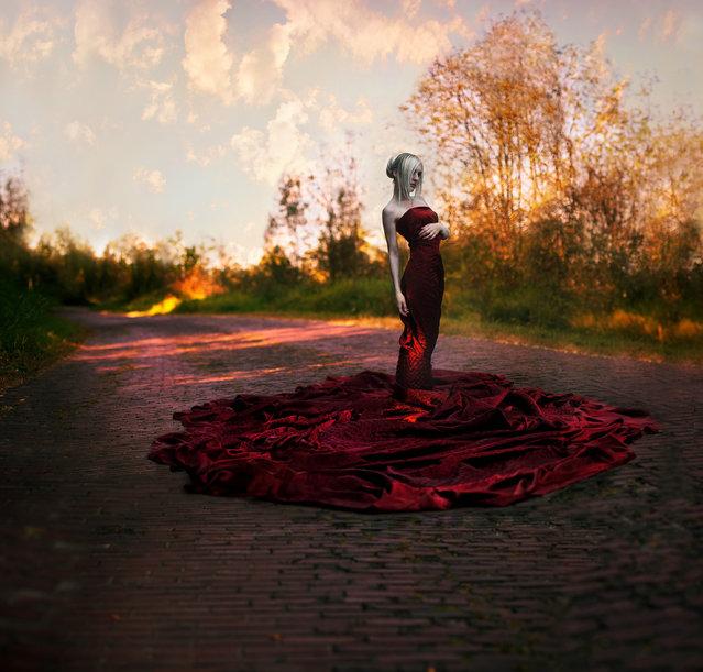 """Beckoning Autumn"". (Kindra Nikole)"