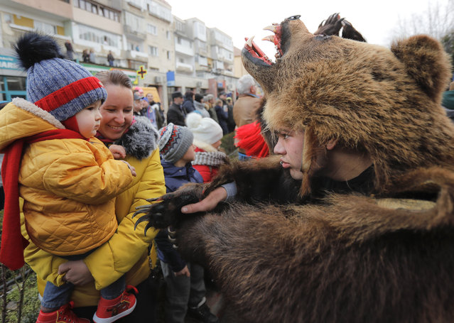 In this Saturday, December 30, 2017, picture a man wearing a bear fur costume approaches a young spectator during an annual bear parade in Comanesti, Romania. (Photo by Vadim Ghirda/AP Photo)