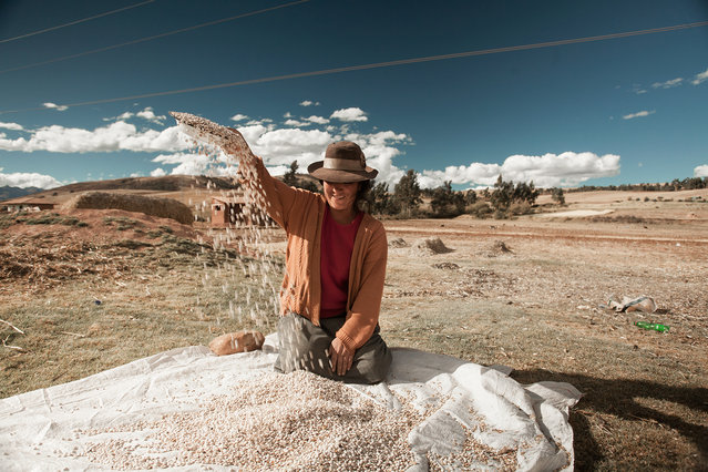 """""""Corn picker"""". At the roadside a corn picker clean the grain to sell it. Photo location: Maras, Peru. (Photo and caption by Carlos Caro/National Geographic Photo Contest)"""