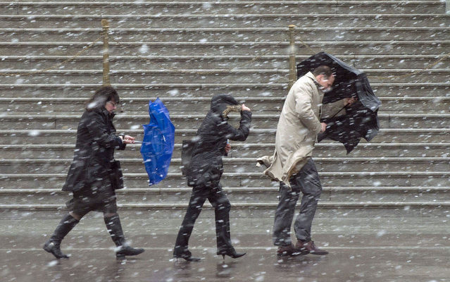 People walk as snow falls during a late winter storm at the US Capitol in Washington, DC, March 6, 2013. Federal offices and many schools have closed in preparation for a mix of snow, sleet and rain which could account for the area's largest winter storm in two years. (Photo by Saul Loeb/AFP Photo)