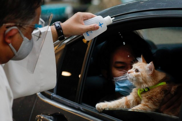 A Catholic priest sprinkles holy water on a cat at a drive-thru pet blessing amid the coronavirus disease (COVID-19) outbreak on World Animal Day, in Eastwood Mall, Quezon City, Philippines, October 4, 2020. (Photo by Eloisa Lopez/Reuters)
