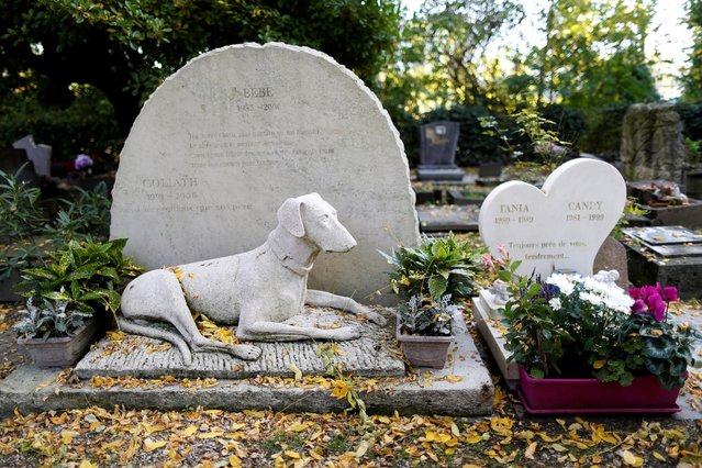 "The grave of two dogs, ""Bebe"" and ""Goliath"", is seen at the cimetiere des chiens (Cemetery of dogs) ahead of the commemoration of All Saints Day at the Montmartre cemetery in Asnieres, northern Paris, France, October 30, 2016. (Photo by Charles Platiau/Reuters)"