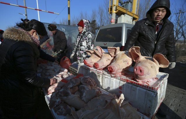 Pig heads are seen on sale as customers select pork at a meat stall of an open-air fair in Puhe township of Shenyang, Liaoning province February 8, 2015. China's consumer price inflation likely slowed to a five-year low in January due to falling oil prices and sluggish demand, while export growth was seen sagging, a Reuters poll showed, raising questions whether more policy stimulus is needed to combat deflationary pressures. (Photo by Reuters/Stringer)