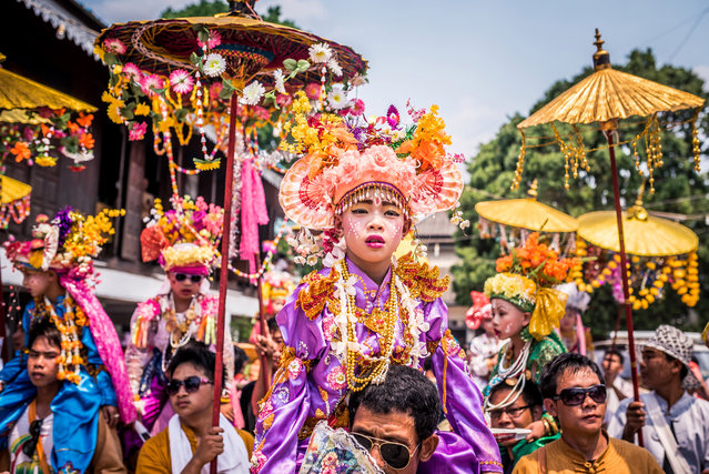 Novice initiates dressed in lavish princely clothes are paraded through the town atop the shoulders of their male relatives in Mae Hong Son, Thailand, April 2016. (Photo by Claudio Sieber/Barcroft Images)