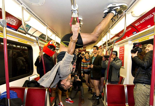 A participant without trousers performs during the 2017 No Pants Subway Ride in Toronto, Canada, on January 8, 2017. Hundreds of participants took part in the annual event in Toronto on Sunday. (Photo by Zou Zheng/Xinhua/Sipa USA)