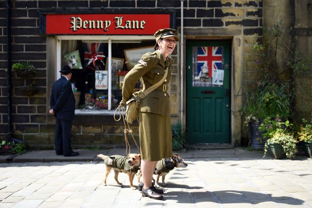 A woman dressed as a member of British Home Guard from World War II laughs as she attempts to unfurl her tangled dog leads on the first day of the Haworth 1940s Weekend in the village of Haworth, Northern England on May 15, 2015. Each year the village celebrates the 1940's with a programme of events and a re-enactment of the period in the village. (Photo by Oli Scarff/AFP Photo)