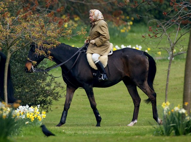 Britain's Queen Elizabeth rides her horse in the grounds of Windsor Castle, three days after the death of her mother, in this April 2, 2002 file photo. (Photo by Dan Chung/Reuters)