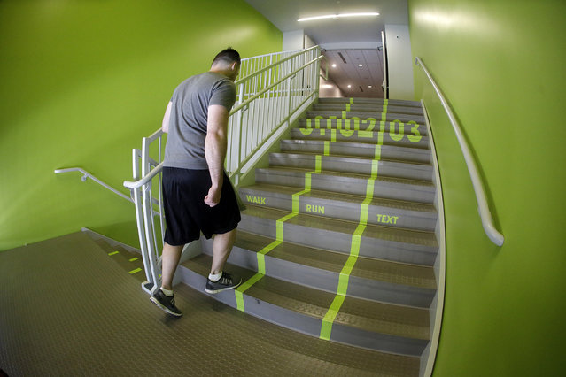 A Utah Valley University student walks up the bright green lanes painted on the stairs to the gym Thursday, June 18, 2015, at Utah Valley University, in Orem, Utah. Utah Valley University spokeswoman Melinda Colton said  the green lanes were intended as a lighthearted way to brighten up the space and get students attention. (AP Photo/Rick Bowmer)