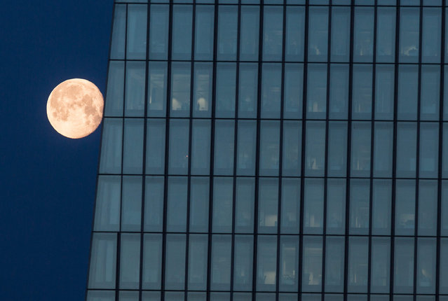 The full moon pictured next to the front of the European Central Bank (ECB) headquarters in Frankfurt am Main, Germany, early 26 January 2016. (Photo by Frank Rumpenhorst/EPA)