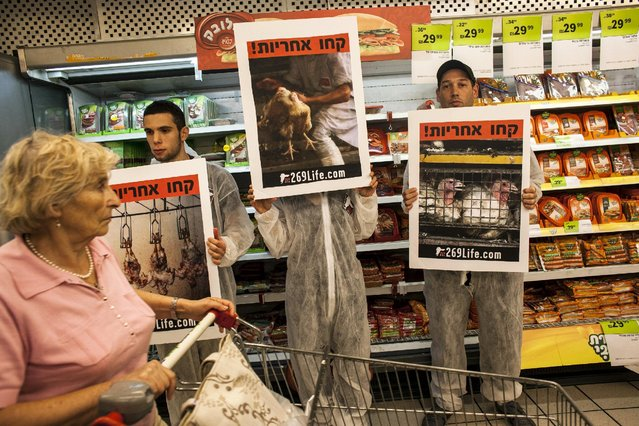 """A customer pushes her cart past activists standing in front of meat products and holding placards calling for animal rights, at a supermarket in Tel Aviv, Israel in this November 7, 2013 file photo. The placards read: """"Take responsibility!"""". (Photo by Nir Elias/Reuters)"""