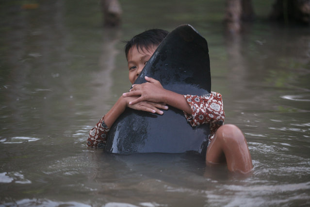 A boy clings on the fin of a dead whale in Probolinggo, East Java, Indonesia, Thursday, June 16, 2016 during a mass rescue operation of stranded whales. Most of more than 30 stranded whales were managed to be pulled into the deep sea, an official said. (AP Photo/Trisnadi)