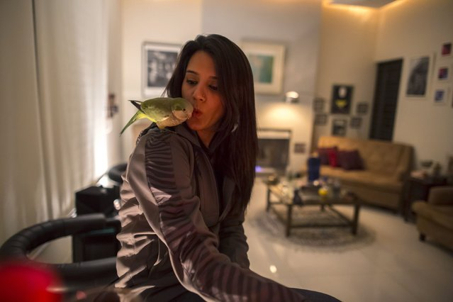 Ansa Hasan, a marketing manager at Porsche Pakistan, plays with a parrot at her house in Lahore February 21, 2014. (Photo by Zohra Bensemra/Reuters)