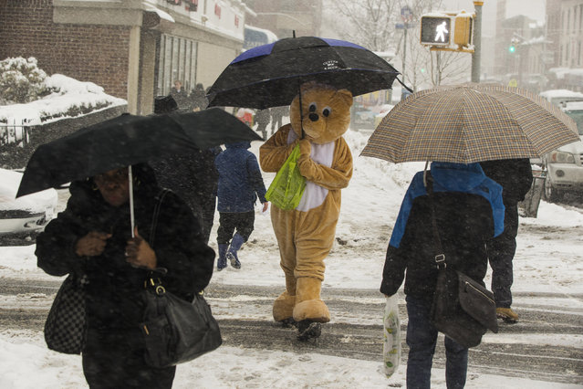 A pedestrian in an animal costume holds an umbrella while walking in a snowstorm in New York March 5, 2015. (Photo by Lucas Jackson/Reuters)