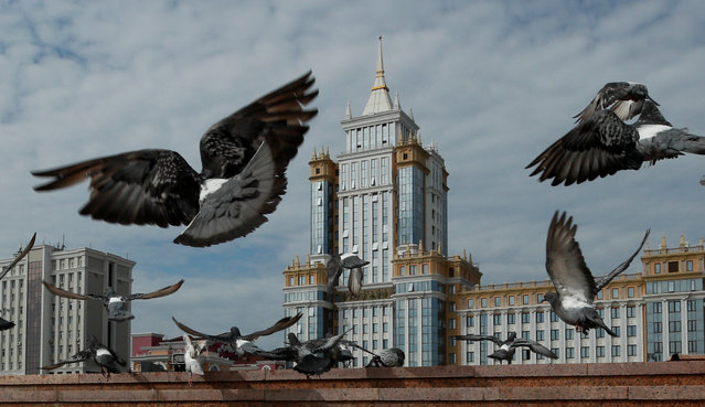 Pigeons fly past Mordovian State University at the Millennium Square in Saransk, Russia August 25, 2017. (Photo by Maxim Shemetov/Reuters)