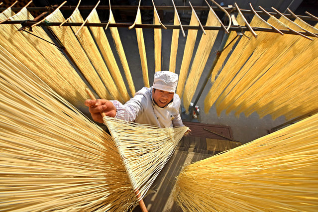 A villager hangs hand-made noodles up to dry in Linyi, Shandong province, China November 21, 2017. (Photo by Reuters/China Stringer Network)