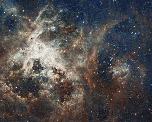 One of the largest mosaics ever assembled from Hubble photos shows several million young stars vying for attention amid a raucous stellar breeding ground in 30 Doradus, a star-forming complex located in the heart of the Tarantula nebula. (Photo by Reuters/NASA/ESA)