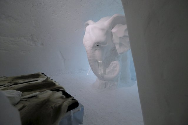 An elephant ice sculpture is seen in a room in the Ice hotel in Jukkasjarvi, Sweden, December 16, 2015. (Photo by Ints Kalnins/Reuters)