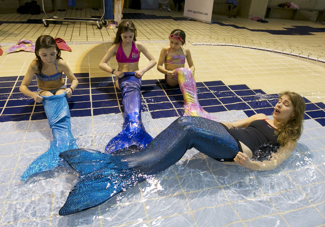Audry-Anne Simard (R) gives instructions for putting on a mermaid tail during class at AquaMermaid in Montreal, February 18, 2015. (Photo by Christinne Muschi/Reuters)