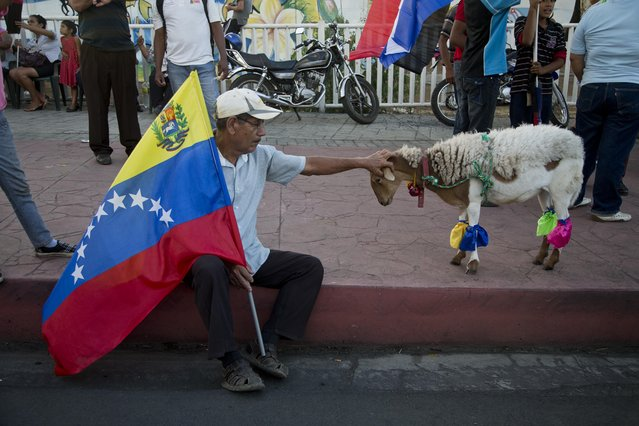 A Nicaraguan man holding a representation of Venezuela's national flag, pets Bambi the goat, as he waits for the start of a march, organized to show solidarity with the South American country, in Managua, Nicaragua, Friday, March 13, 2015. In an unannounced visit, Venezuela's President Nicolas Maduro and his wife Cilia Flores landed at the international airport Friday evening, and participated in the march led by President Daniel Ortega. (Photo by Esteban Felix/AP Photo)
