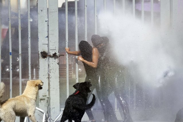 Protesters are drenched with water from a water cannon operated by police during clashes in the courtyard of the University of Santiago, during a demonstration in Santiago, Chile, Thursday, April 16, 2015. (Photo by Luis Hidalgo/AP Photo)