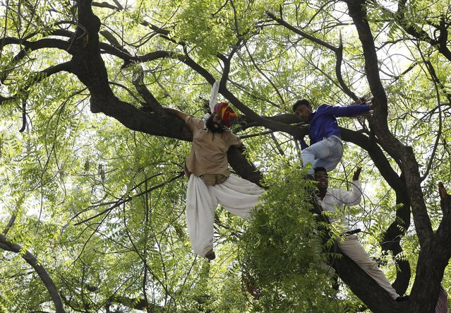 Supporters of Aam Aadmi (Common Man) Party (AAP) try to rescue a farmer who hung himself from a tree during a rally organized by AAP, in New Delhi April 22, 2015. (Photo by Adnan Abidi/Reuters)