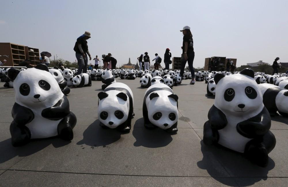 Panda Mob