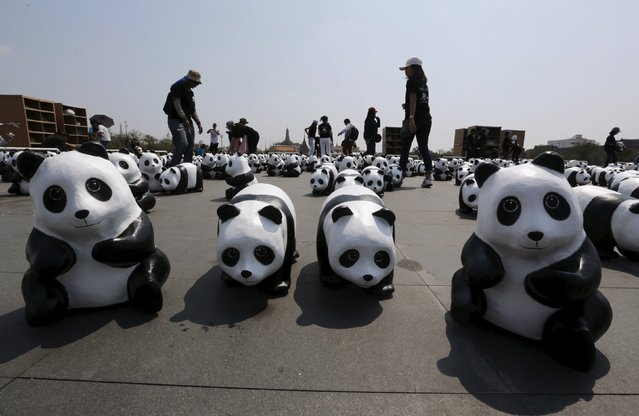Volunteers arrange panda sculptures ahead of an exhibition by French artist Paulo Grangeon in Bangkok, Thailand, March 4, 2016. (Photo by Chaiwat Subprasom/Reuters)