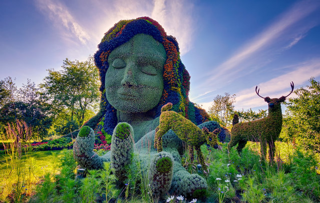 Monumental Plant Sculptures At The 2013 Mosaicultures Internationales De Montreal